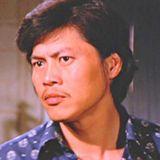 《降头(1975)》剧照/剧情/演员表-狄龙.罗烈.恬妮.李.